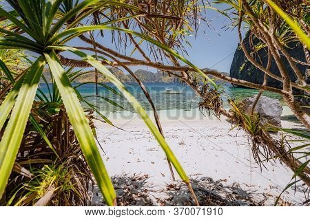 El Nido, Palawan, Philippines. Tropical Paradise Beach With Exotic Foliage Plants. Blue Lagoon Surro