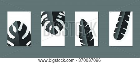 Tropical Leaves In Black And Gray Shades, Minimalist Black, Simplicity Conceptual, Vector Image