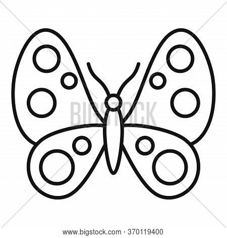 Macro Butterfly Icon. Outline Macro Butterfly Vector Icon For Web Design Isolated On White Backgroun
