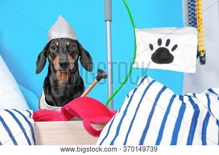 Dachshund Dog In Knights Helmet And Chain Mail Sits On Barricade Built From Handy Materials And Inte