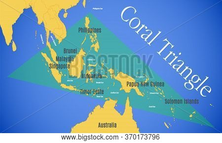 Schematic Vector Map Of The Coral Triangle.