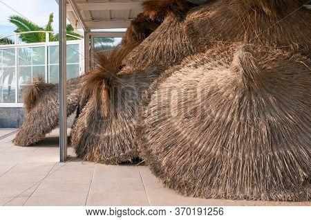 Unused, Stacked Straw Umbrellas. Tourist Crisis Due To Coronavirus