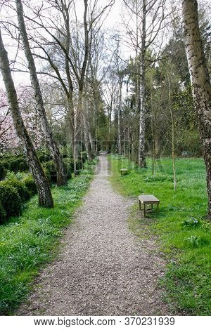 Forest Track At Insel Hombroich, Neuss, Germany