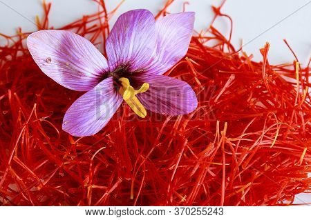 Saffron Flower On A Pile Of Saffron Threads On A White Background