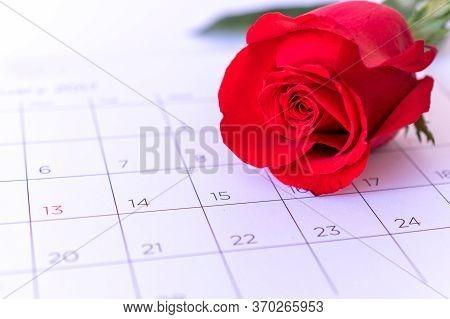 Single Rose Flower On Calendar Page, Valentin, Valentine Card Concept,