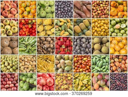 Creative Collage Of Tropical Fruit Images. Top View