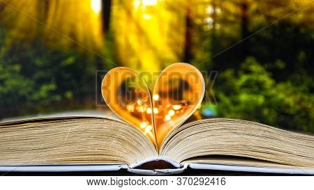 Book With Love Symbol Isolated On Forest Nature Background, Love Books, Love To Read, Love Stories,