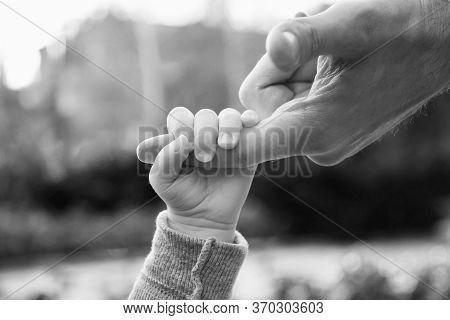 A Baby Holding Man's Finger While Walking In A Park. Closeup, Black And White, Selective Focus