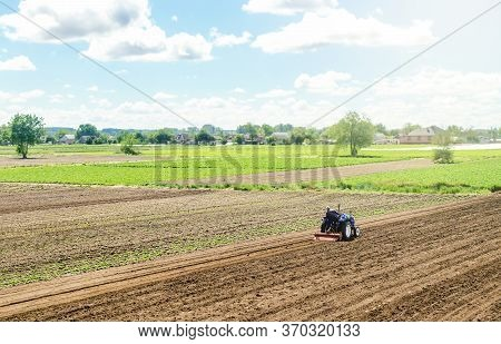 A Tractor Rides On A Farm Field. Loosening The Surface, Cultivating The Land For Further Planting. F
