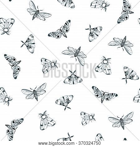 Blue Night Moth, Indigo Butterfly Seamless Pattern, Watercolor Vintage Illustration, Hand Drawing