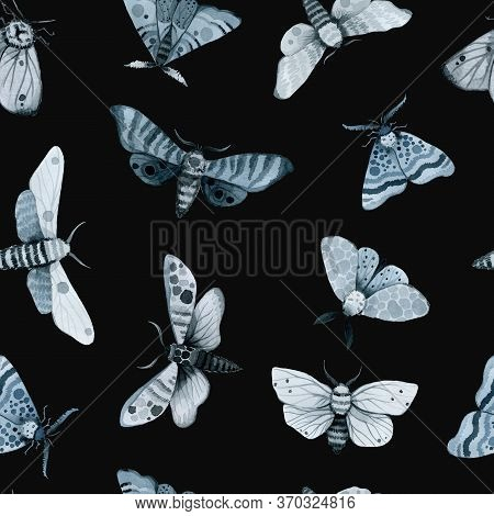 Blue Night Butterfly, Indigo Butterfly Seamless Pattern, Wild Insects, Watercolor Vintage Illustrati