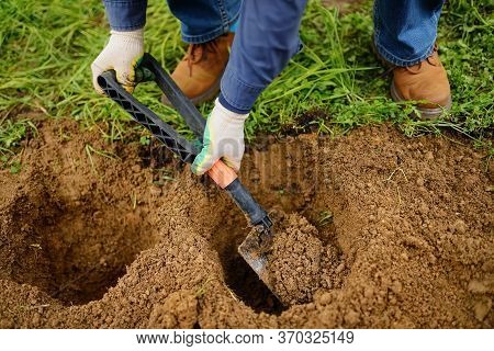 Man Diging Holes A Shovel For Planting Juniper Plants In The Yard. Seasonal Works In The Garden. Lan