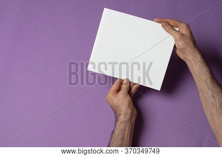 Male Hand Holding A Catalog With Blank Cover On Purple Background, Mock-up Series Template Ready For