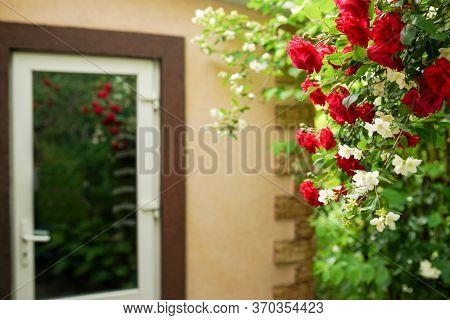 Landscaped Front Yard Of A House With Red Roses Flowers