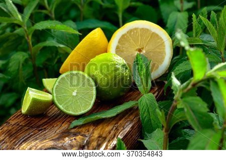 Growing Mint In The Garden And Limes With Lemon. Limes, Lemon And Mint On An Old Wooden Background.