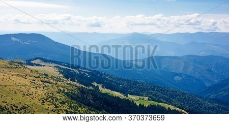 Hills And Valleys Of Carpathian Mountains. Trees And Bushes On The Grassy Slopes.  Beautiful Landsca