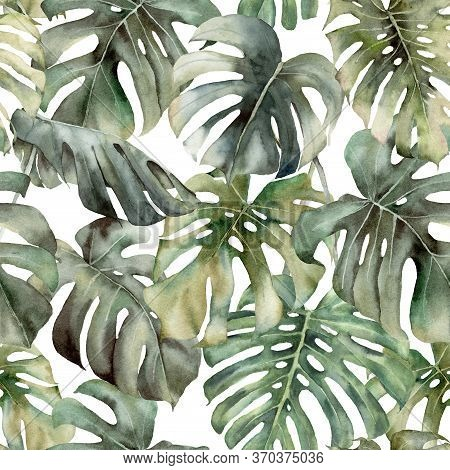 Watercolor Big Seamless Pattern With Tropical Monstera. Hand Painted Exotic Leaves And Branches Isol