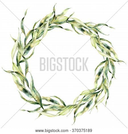 Watercolor Underwater Wreath With Green Laminaria. Hand Painted Oceanic Floral Illustration With Alg