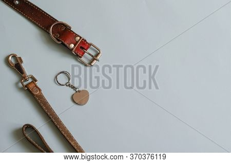 Loss Of Pet Background. Accessories For Dogs On A Light Blue Background. Old Leather Collar, Address