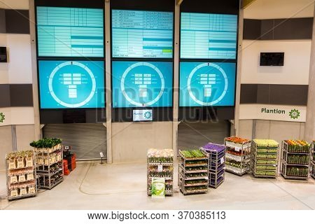 Ede, Netherlands - April 18, 2015: Flower Auction Trade Clock And Electronic Screen At Plantion Comm