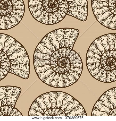 Nautilus Cephalopods Seamless Pattern Beige Color. Sketch Scratch Board Imitation.