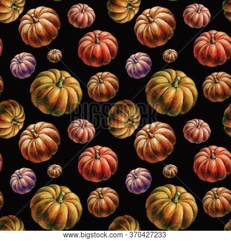 Hand-drawn Orange Seasonal Fall Autumn Pumpkins On Black: Seamless Pattern Illustration Background.