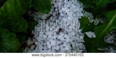 White Cold Ice Crystals On The Ground Among Green Leaves After A Thunderstorm With Hail, Copy Space.