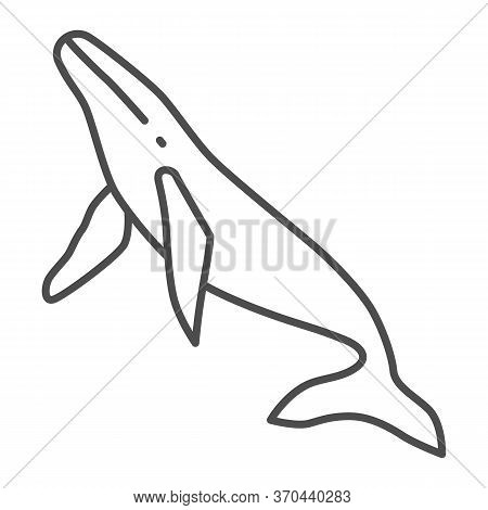 Whale Thin Line Icon, Ocean Concept, Orca Sign On White Background, Sperm Whale Icon In Outline Styl