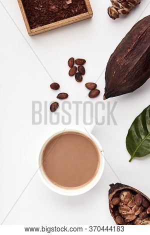Cocoa Beans In Pods On A White Background