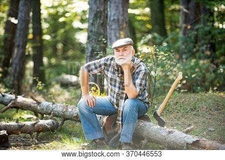 Old Bearded Man In Forest. Fashion Portrait Man. Aged Funny Forester. Woodman In Forest. Old Bearded