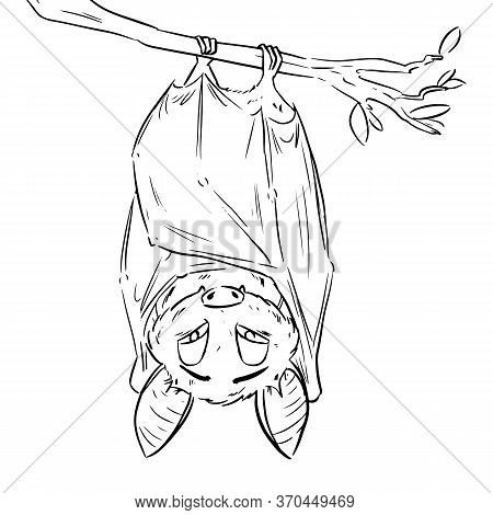 Vector Linear Illustration Of The Flying Bat Hanging Upside Down. Funny Comic Style Cute Outline Bat