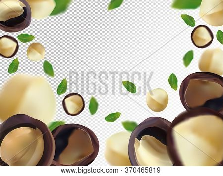 Flying Macadamia With Green Leaf On Transparent Background. 3d Realistic Nuts. Macadamia Falling Fro