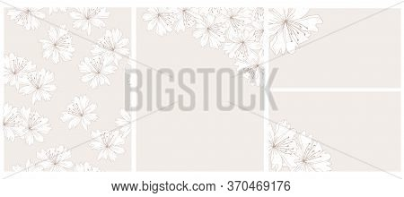 Wild Flowers Vector Illustrations And Seamless Pattern.white Delicate Flowers Isolated On A Light Be
