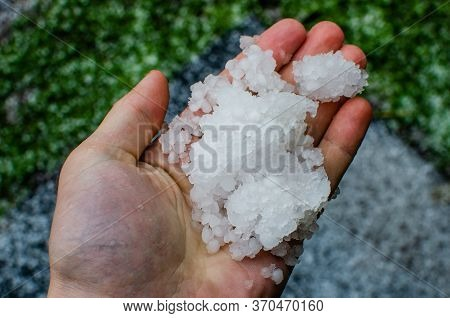 Large Pieces Of Hailstorm In The Palm Of Your Hand. After Natural Anomalies, A Man Holds A Large Hai