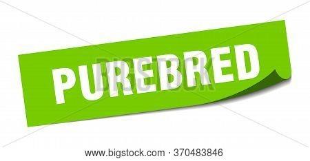 Purebred Sticker. Purebred Square Sign. Purebred. Peeler