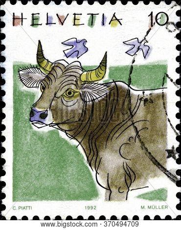 02 11 2020 Divnoe Stavropol Territory Russia The Postage Stamp Switzerland 1992 Animals Cattle Breed