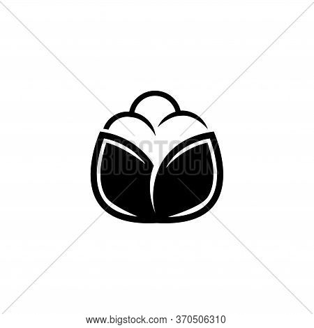 Cotton Boll, Cellulose Textile, Flower Fiber. Flat Vector Icon Illustration. Simple Black Symbol On