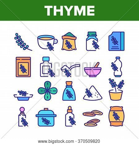 Thyme Plant Product Collection Icons Set Vector. Thyme Branch And Aromatic Herb, Drink Cup And Bottl