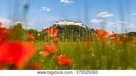 Festung Hohensalzburg In Summer. Blooming Red Poppy Field And Blue Sky