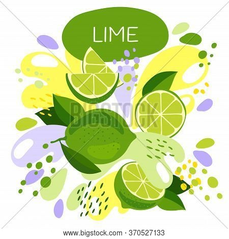 Vector Illustration Of An Organic Fruit Drink. Ripe Lime Fruits With Splash Of Bright Fresh Lime Jui