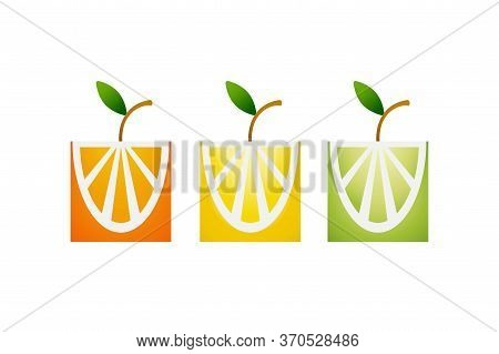 Set Of Fresh Tropical Citrus Fruits In A Flat Stylized With A Gradient. Orange, Lime, Lemon, Grapefr