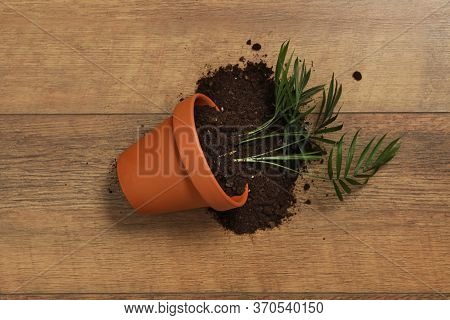 Overturned Terracotta Flower Pot With Soil And Plant On Wooden Background, Flat Lay