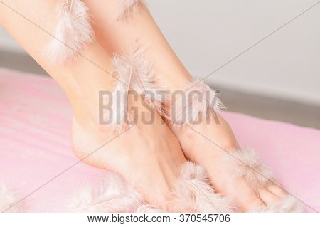 Close Up Of Long Legs Of Woman In A White Feathers With Perfect Smooth And Silky Skin On A Pink Back