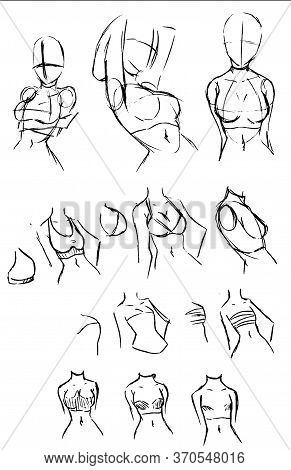 Tutorial Of Drawing A Female Body. Drawing The Human Body, Step By Step Lessons. Female Breast Drawi