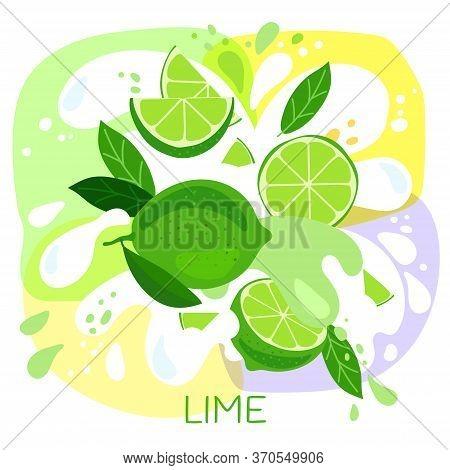 Vector Illustration Of An Organic Lime Milkshake Or Fruit Drink. Ripe Lime Fruits With Splash Of Mil
