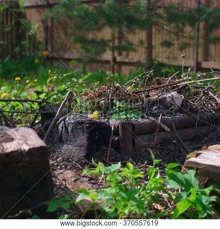 Organic Waste Placed In A Extinct Fire, Outdoor Closeup