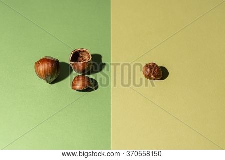 Peeled Hazelnut Along With Its Shells And Another Hazelnut In Shell On Green And Yellow Background
