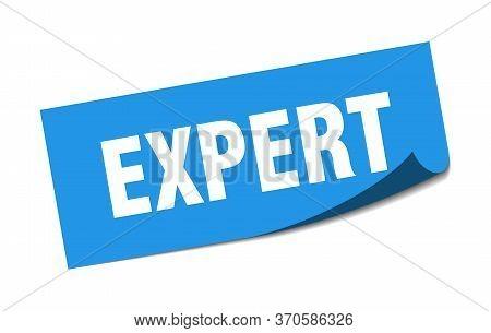 Expert Sticker. Expert Square Isolated Sign. Expert