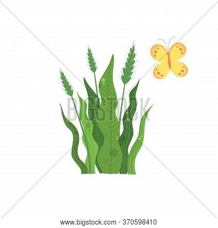 Green Wheat Plant Near Colorful Butterfly Icon. Cartoon Of Green Wheat Plant Near Colorful Butterfly