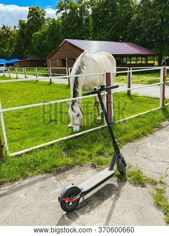 Theme Environmentally Friendly Transport. Electric Scooter Next To Beautiful Horse. Without Gasoline